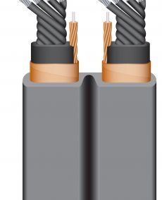 Wireworld silver-electra