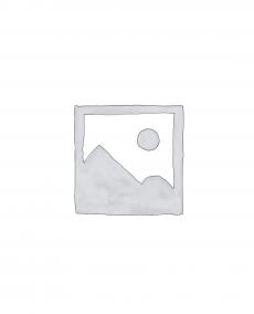 DAC (Digitaal-analoogomzetter)